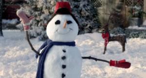 usps_snowman